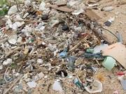 保良漁港清掃活動