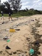 高野漁港清掃活動